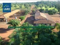 Fazenda com 34.848 ha. em Cocalinho - MT