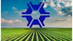 Serviços agronômicos em geral