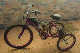 Tricíclo bibicleta adaptado c/ motor 80cc