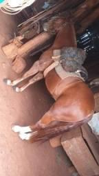 Vendo cavalo barato