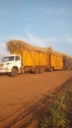 Título do anúncio: Tenho caminhão disponível para amendoim ,soja e para plantiu de cana