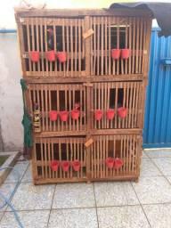 Uma gaiola com seis repartimentos