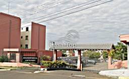 Apartamento à venda com 3 dormitórios em Colonia dona luiza, Ponta grossa cod:3594
