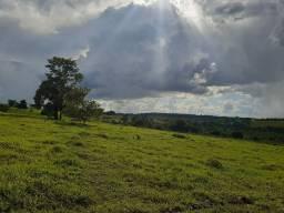 Chácara de 35 ha, a 104 km de Goiânia