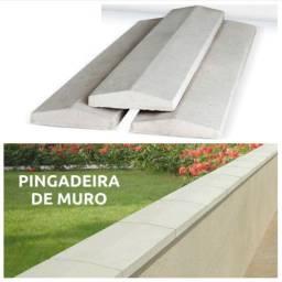 Pingadeira / Chapéu de Muro
