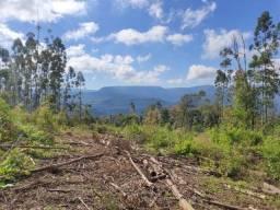 Título do anúncio: Vendo Chácara de 1,5 hectares em Taquara
