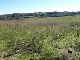 Vendo área com 188 hectares