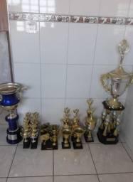 Vendo 20 troféus todos em excelente estado de conservação