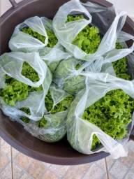 Vende se verduras