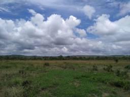 Fazenda Cavalcante 270 alqueires goiano!