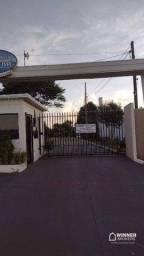 Casa com 2 dormitórios à venda por R$ 300.000,00 - Aguas do Ivai - Doutor Camargo/PR