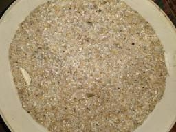 Substrato/Cascalho de rio para aquário 25 kg
