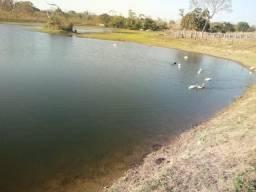 Fazenda para Pecuária em Acorizal fica 80 km de Cuiabá