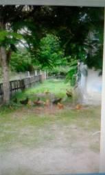 Sitio com 2 hectares em Jaboatão (porteira fechada)