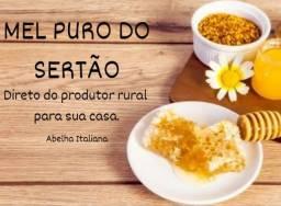 MD Mel Puro