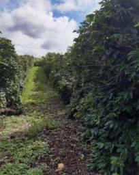 Título do anúncio: SÃO PEDRO DA UNIÃO - RURAL - Zona Rural