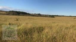 Fazenda à venda, 60 alqueires - Rural - Ibiraci/MG