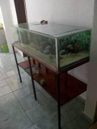 Troco Aquario 270 litros1,43x0,38x0,52completo lindo