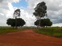 Fazenda em Amambai - Ms