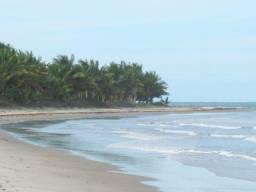 Lotes prox Guaiu Eco Village&Praia das Tartarugas Santo Antonio BA
