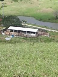 Fazenda de 33 alqueires em São Pedro da Aldeia RJ
