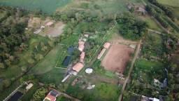 Aras em Jataizinho com 38.159m² a 25km de Londrina
