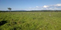 Área rural em Montes Claros - Minas Gerais