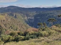 Título do anúncio: Terreno de altitude, 20 hectares