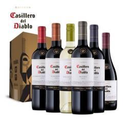 vinhos casillero