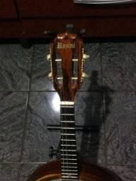 Banjo rozini eletrico rj12 profissional barato