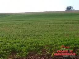 Sítio de 35.6 alq, sendo 27 alq de lavoura, localizado no município de Capanema-Pr