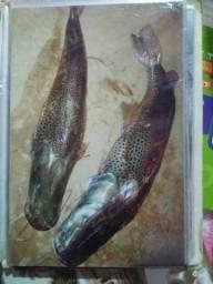 Vendo peixe