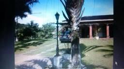 Chácara à venda com 4 dormitórios em Zona rural, Juquia cod:JMI063