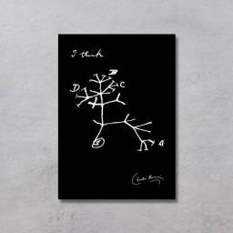Placa Decorativa - Biologia Evolução - I think, Darwin Tree - Preto