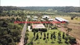 Fazenda em Uberlândia 11,26 alqueires -Troca casa em Condomínio