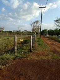 Sítio com 4,5 hectares, situado na cidade de Arari-MA
