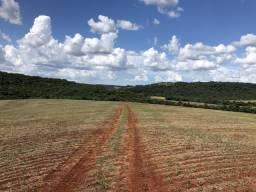 Ótima Fazenda Região de Fênix 363 Alqueires