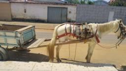 Vende-se cavalo já com a carroça