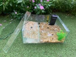 Aquaterrario / terrário com rampa e filtro