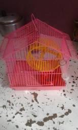 Gaiola de hamster mais bebedouro
