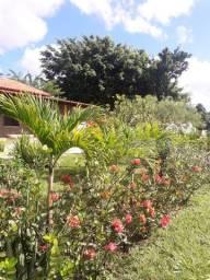 Casa em área rural em Alagoinhas - oportunidade