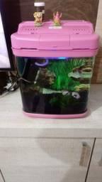 Aquario rosa 22 vigo