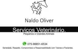Serviços Veterinário, Posso te ajudar ?