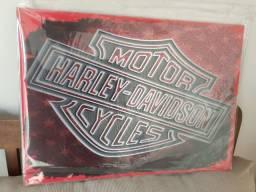 Quadro decorativo Harley Davidson 30x 40 cm.