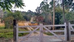 Terreno na Colônia Rodrigo Silva 2100 metros quadrados