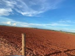 Fazenda para pecuária a venda no município de Pereira Barreto-SP, região de Jales, com 218