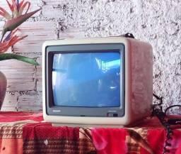 TV 12 polegadas de camping bivolt SEMP