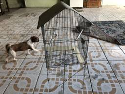 Viveiro gaiola