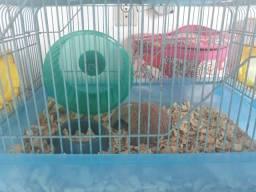 Gaiola + 2 Hamster