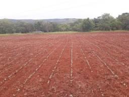 Fazenda com 572ha para soja, cafe ou gado, em Coromandel!!
